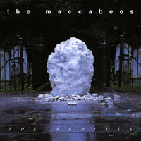 Something Like Happiness — The Maccabees