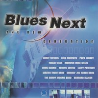 Blues Next-The New Generation — сборник