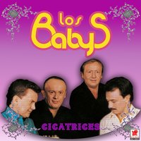 Cicatrices — Los Baby's