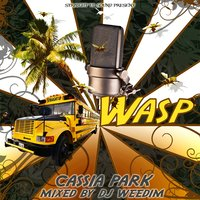 Cassia Park — Wasp, Straight Up Sound, Straight Up Sound, Wasp
