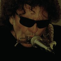 The Shine — Tony Joe White