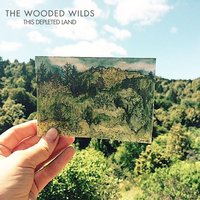 This Depleted Land — The Wooded Wilds