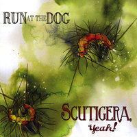 Scutigera, Yeah! — Run at the Dog