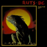 Animal Now — Ruts D.C.