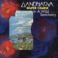 In A Wild Sanctuary/Gardharva — Beaver & Krause