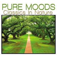 Pure Moods Classics In Nature — Lois Anderson