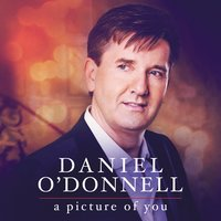 A Picture of You — Daniel O'Donnell