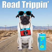 Road Trippin' — Viva La Rock