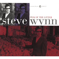 Pick Of The Litter — Steve Wynn
