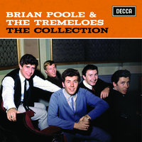 The Collection — Brian Poole & The Tremeloes