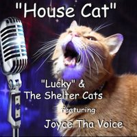House Cat  (feat. Joyce Tha Voice) - Single — Lucky & the Shelter Cats feat. Joyce Tha Voice, Lucky & the Shelter Cats