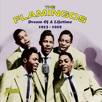 Dream of a Lifetime 1953-1959 — The Flamingos