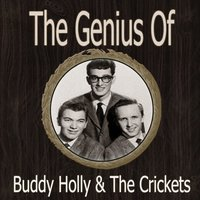 The Genius of Buddy Holly and the Crickets — Buddy Holly & The Crickets