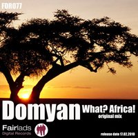 What? Africa! — Domyan