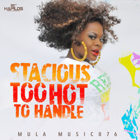Too Hot to Handle - Single — Stacious