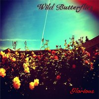 Glorious — Wild Butterflies