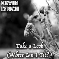 Take a Look (Where Can I Fit?) — Kevin Lynch, Kevin Michael Lynch