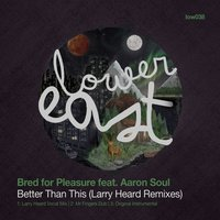 Better Than This — Bred For Pleasure feat. Aaron Soul