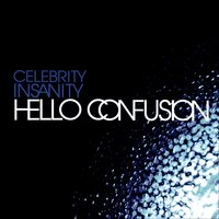 Celebrity Insanity — Hello Confusion