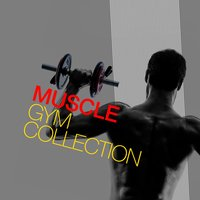 Muscle Gym Collection — Muscle Gym