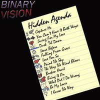Hidden Agenda — Binary Vision