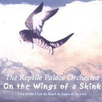 On The Wings Of A Skink — REPTILE PALACE ORCHESTRA