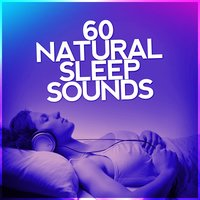 60 Natural Sleep Sounds: Peaceful Rest, Mindful Meditation, Spa, Wilderness Soundscapes — сборник