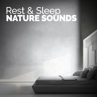 Rest & Sleep: Nature Sounds — Rest & Relax Nature Sounds Artists