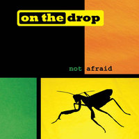 Not Afraid — On the Drop