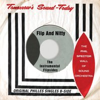 Flip and Nitty - the Instrumental Flipsides — The Phil Spector Wall Of Sound Orchestra
