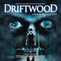 Driftwood - Original Motion Picture Soundtrack — William Ross, Split Window, Immaculate Mess, The Devil Roosevelt