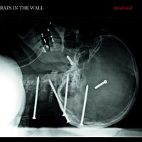 Dead End — Rats in the Wall