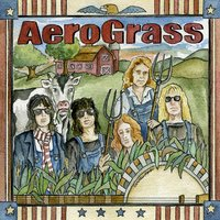 Aero Grass — Bluegrass - Various Artists