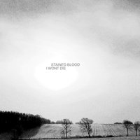 I Wont Die — Stained Blood