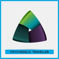 Psychedelic Traveller 2009 — сборник