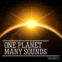 One Planet Many Sounds, Vol. 11 — сборник