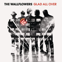 Glad All Over — The Wallflowers