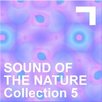 Sound Of The Nature – Collection 5 — сборник