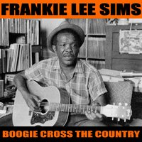 Boogie Cross the Country — Frankie Lee Sims