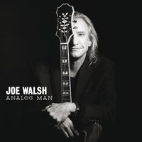 Analog Man — Joe Walsh