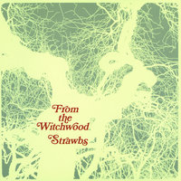 From The Witchwood — Strawbs