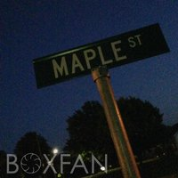 Maple — Boxfan