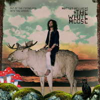 Out Of The Frying Pan, Into The Woods — Mattias Hellberg & The White Moose