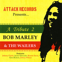 A Tribute to Bob Marley & The Wailers — JEAN MARIE RIACHI