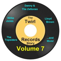 Twirl Records Story Volume 7 — сборник