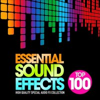 Essential Sound Effects Top 100 — Carmichael, Woods