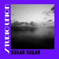 Sugar Sugar — Studio Union