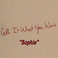 Call It What You Want — SOPHIE