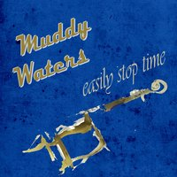 Easily Stop Time — Muddy Waters