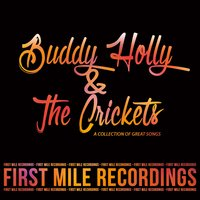 Buddy Holly & The Crickets - A Collection of Great Songs — Buddy Holly, The Crickets